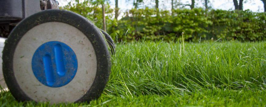 Jak správně pečovat o trávník na jaře?