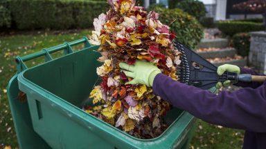 Podzimní úklid zahrady s ochrannými pomůcky
